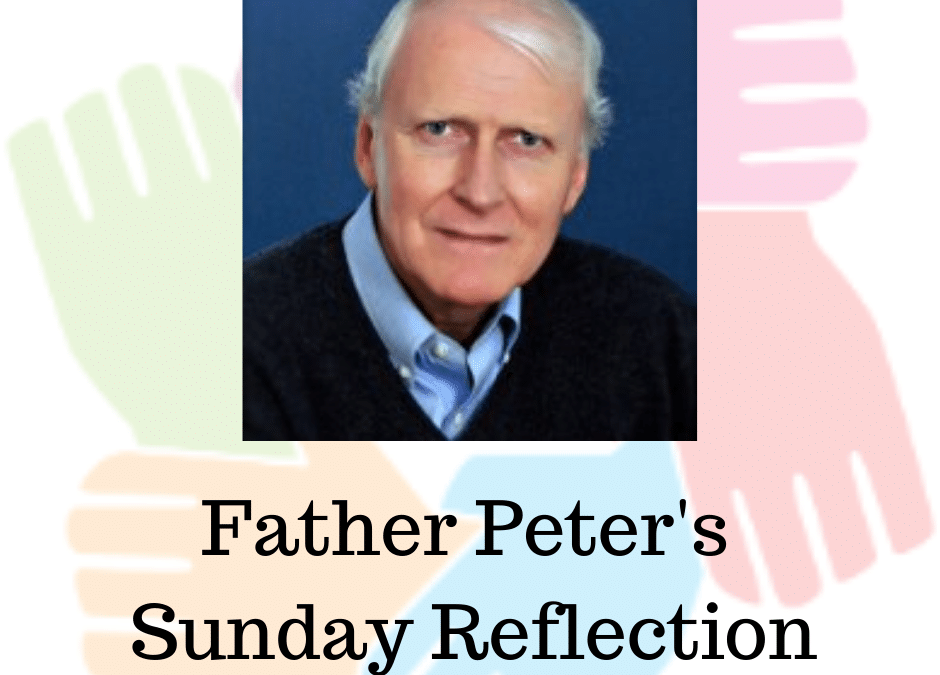 Father Peters Sundays Reflection